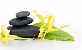 Pierres de station thermale et fleur de ylang-ylang Photos stock