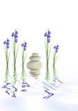 Pierres de station thermale et fleurs d'iris Photographie stock