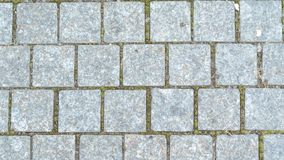 Pierres de trottoirs, pierres de pont en parc d'automne images stock