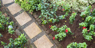 Pierres de voie dans un jardin de fleur Images libres de droits