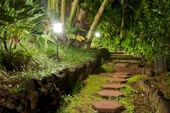 Pierres de voie dans un jardin de nuit Photographie stock