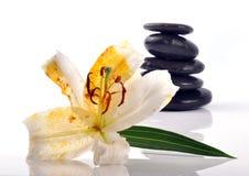 Pierres de zen photos libres de droits