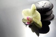 Pierres de zen avec l'orchidée Images stock