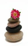 Pierres de zen avec la fleur Image libre de droits