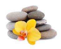 Pierres de zen avec la fleur d'orchidée Photo libre de droits