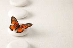 Pierres de zen avec le papillon Photographie stock