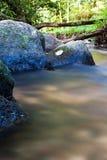 Pierres en rivière Photo libre de droits