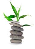 Pierres et bambou de zen Photographie stock libre de droits