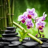 Pierres et bambou de zen Photos libres de droits