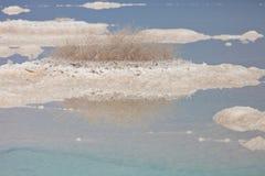 Pierres et cristaux de sel de mer morte ? la mer morte Macro photo l'israel photo libre de droits