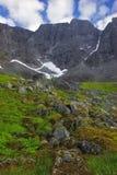 Pierres et herbe en montagne Image stock