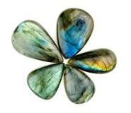 Pierres gemmes bleues magnifiques de labradorite dans l'isolat de forme d'étoile de fleur Photographie stock libre de droits