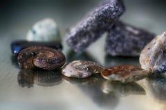 Pierres gemmes simples dans l'avant Photo stock