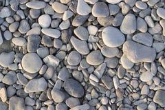 Pierres grises de mer Photos libres de droits
