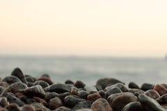 Pierres humides sur la photo noire et blanche de bord de mer Photos stock