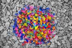 Pierres multicolores au milieu des pierres noires et blanches Photographie stock libre de droits