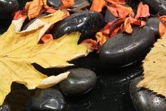 Pierres noires Photo stock