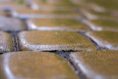 Pierres parfaitement également étendues des pavés humides de la pluie Fond photo stock