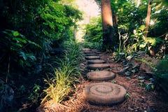 Pierres rondes le long d'Olle Pathway par la forêt, Seogwipo, île de Jeju, Corée Photographie stock libre de droits