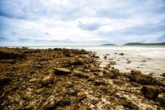 Pierres rugueuses sur le sable Phénomène de marée de mer mer sale d'algue et de plancton image pour l'espace de fond, de papier p photographie stock