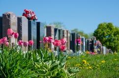 Pierres tombales alignées dans un cimetière Image stock