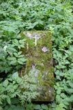 Pierres tombales antiques dans Kolomenskoye Photographie stock