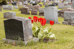 Pierres tombales dans un cimetière Photographie stock