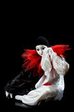 Pierrot infelice Fotografia Stock Libera da Diritti