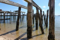 Piers from destroyed dock standing crooked out in the ocean with moss and barnacles around bottoms and a marina and sailboats in t stock photo