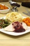 piersi delisious gość restauracji dziękczynienia indyk Fotografia Royalty Free