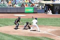 Pierwsza Liga Baseballa Obraz Royalty Free