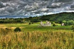 Pierwszego planu opactwo, okręg administracyjny Westmeath, Irlandia Zdjęcia Royalty Free