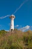 pierwszoplanowy trawy latarni morskiej biel Obrazy Royalty Free