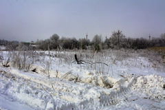 Pierwszy śnieg spadał Fotografia Stock