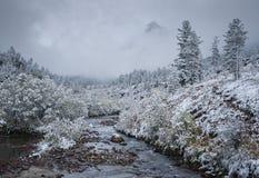 Pierwszy śnieg w górach zdjęcia stock
