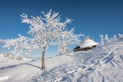 Pierwszy śnieg w Velika Planina, Kamnik, Slovenia zdjęcia royalty free