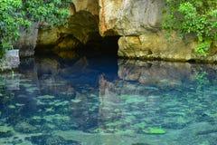 Pierwszy źródło woda zdjęcia stock