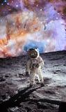Pierwszy mężczyzna na księżyc kosmonauta Fotografia brać od NASA royalty ilustracja