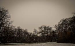 Pierwszy śnieg sezon Zdjęcia Royalty Free