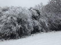 Pierwszy śnieg w Londyn Zdjęcie Stock