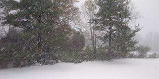 Pierwszy opad śniegu jesień 2o18 zdjęcia stock