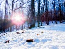 Pierwszy opad śniegu w Fontecerro Rieti Włochy zdjęcie stock