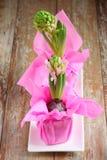 Pierwszy wiosna kwiaty. Fotografia Stock