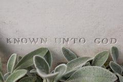 Pierwszy wojna światowa niewiadomego żołnierza grób Obrazy Royalty Free
