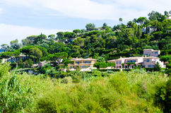 Pierzeja dobra zielona panorama Fotografia Royalty Free