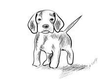 Pies ilustracja wektor