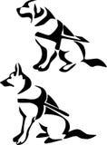 Pies ilustracji