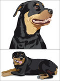 pies. ilustracja wektor