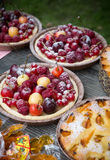 Pies with berries. Baked pies on a  table Stock Photography