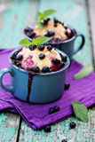Pies with blueberries Stock Images